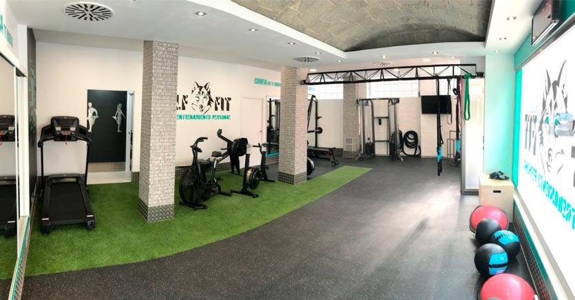 Césped artificial para gimnasio y suelo de caucho